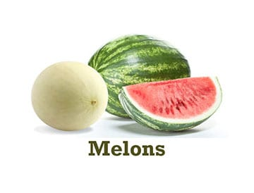 Eagle Eye Produce Melons