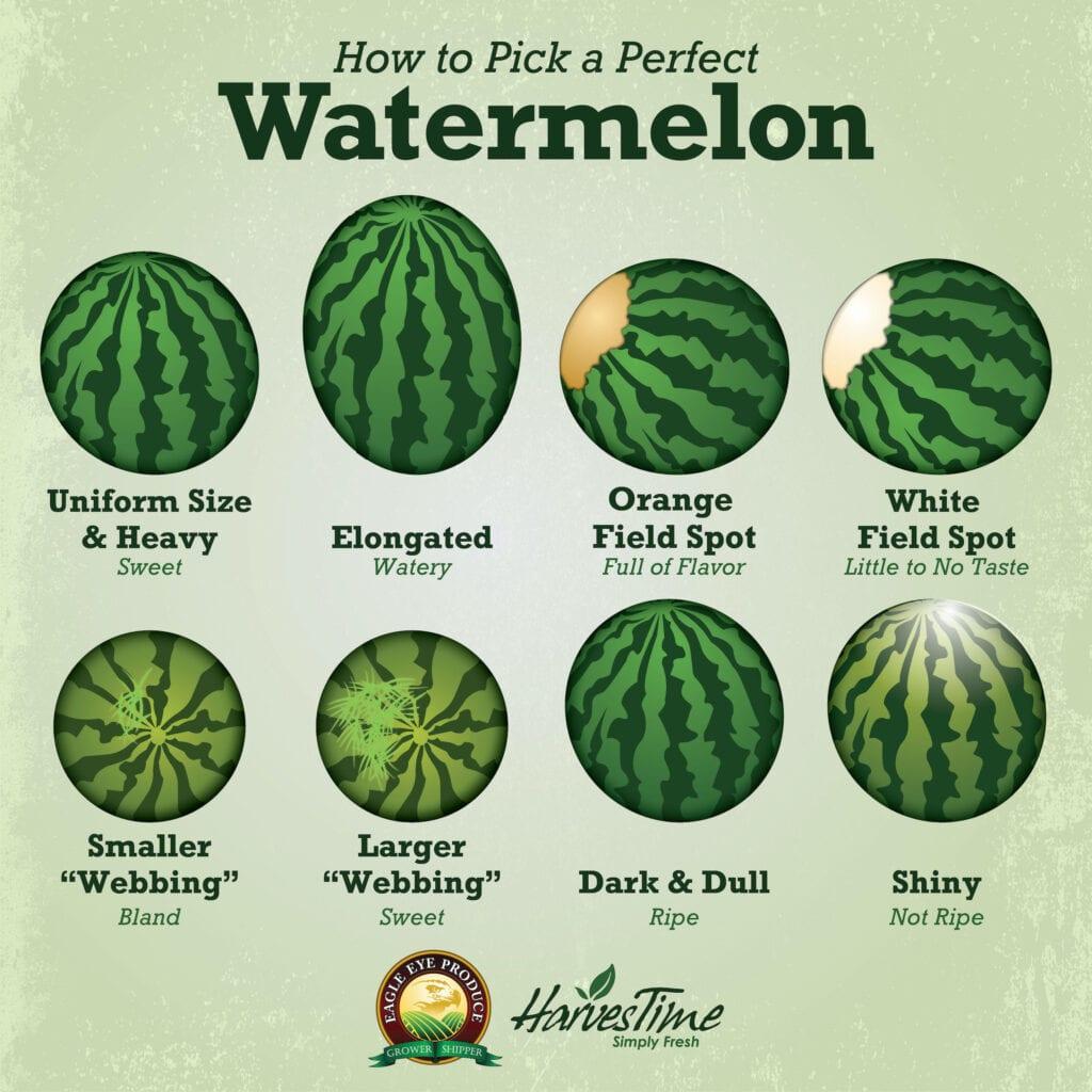 Watermelon time